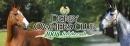Derby Owners Club 2008